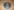 "Myford 6"" Faceplate, 80212729"
